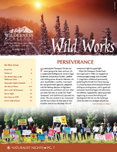 WW-Newsletter-web-2015-page1