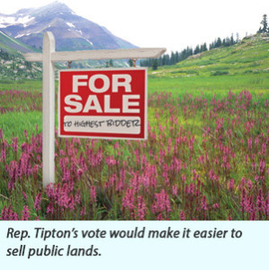 Public-Lands-for-Sale-web