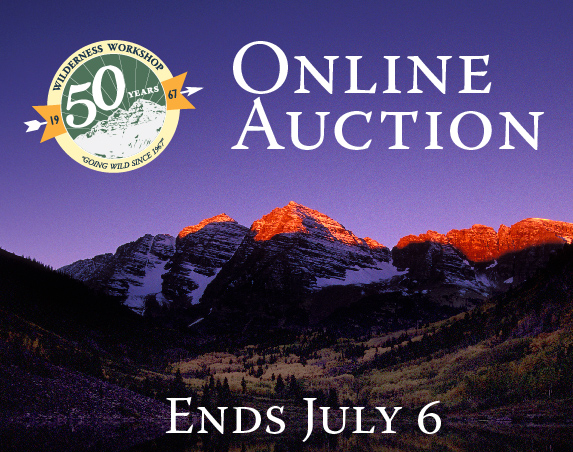 Online-Auction-2017-01.jpg